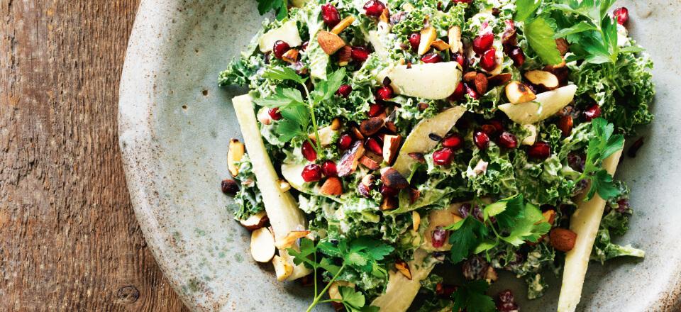 Grønkålssalat fra SalatTøsens Grønne Hverdag
